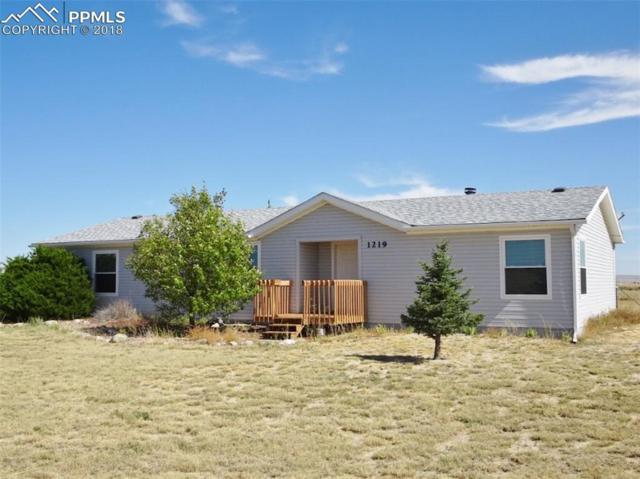1219 Buffalo Run Road, Calhan, CO 80808 (#7732991) :: The Dunfee Group - powered by eXp Realty