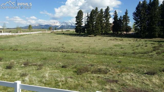 211 Joshua Road, Divide, CO 80814 (#7733206) :: Action Team Realty