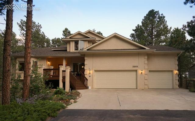 18415 Lazy Summer Way, Monument, CO 80132 (#7735824) :: 8z Real Estate