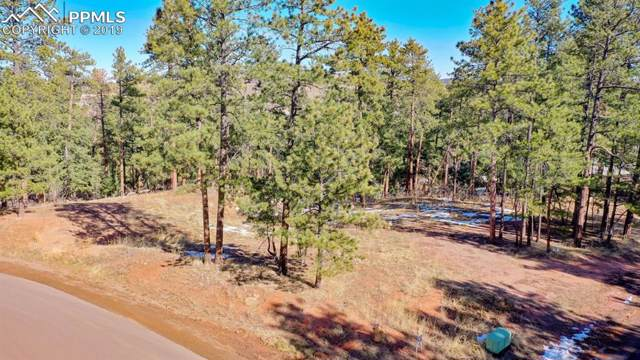 4459 Shoshone Drive, Larkspur, CO 80118 (#7738223) :: 8z Real Estate