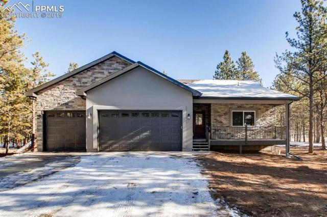 1175 Ptarmigan Drive, Woodland Park, CO 80863 (#7739466) :: The Dunfee Group - powered by eXp Realty