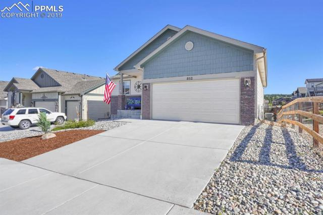 852 Tailings Drive, Monument, CO 80132 (#7743936) :: Action Team Realty