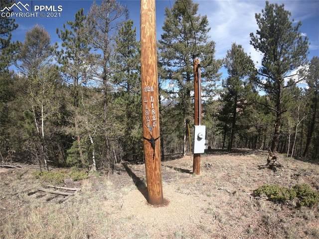 599 Dandy Jim Drive, Cripple Creek, CO 80813 (#7746259) :: The Kibler Group