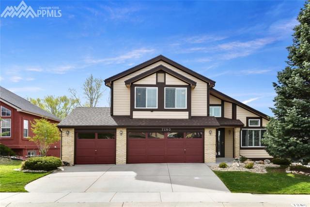 7280 Cotton Drive, Colorado Springs, CO 80923 (#7746921) :: Jason Daniels & Associates at RE/MAX Millennium