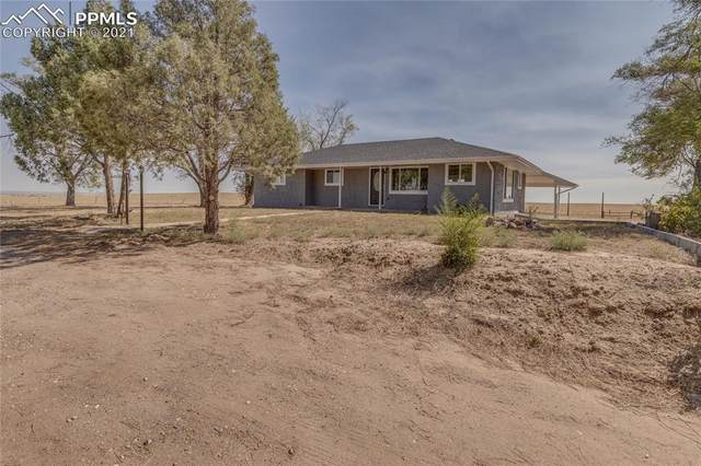 15375 Highway 94, Colorado Springs, CO 80930 (#7747397) :: Tommy Daly Home Team