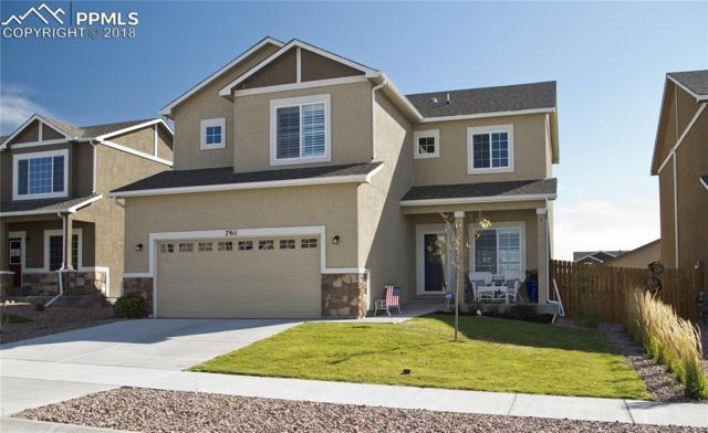 7911 Martinwood Place, Colorado Springs, CO 80908 (#7748684) :: Fisk Team, RE/MAX Properties, Inc.