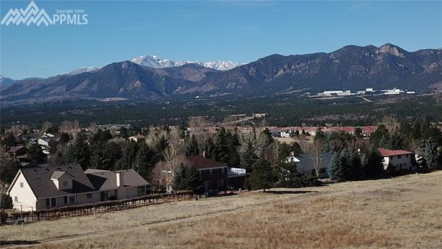 14345 Spyglass Hill Place, Colorado Springs, CO 80921 (#7751928) :: The Peak Properties Group