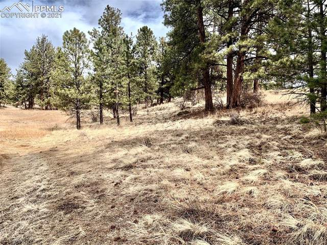 488 Navajo Trail, Florissant, CO 80816 (#7753876) :: Action Team Realty