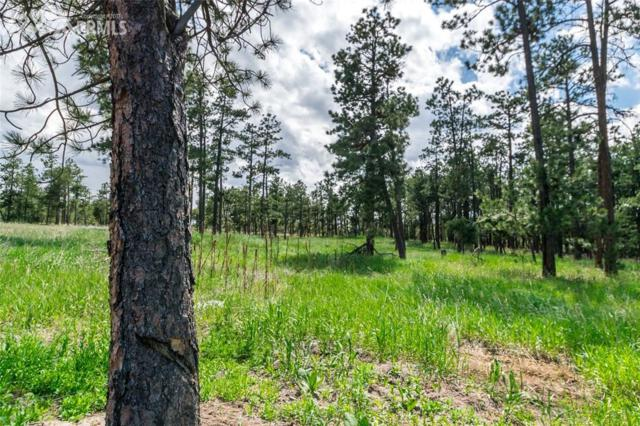 19405 Hilltop Pines Path, Monument, CO 80132 (#7756589) :: The Dixon Group