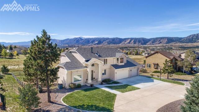 905 Bowstring Road, Monument, CO 80132 (#7757305) :: 8z Real Estate