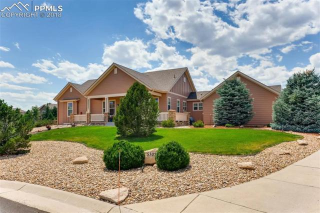 5302 Danvers Court, Castle Rock, CO 80104 (#7759611) :: Jason Daniels & Associates at RE/MAX Millennium