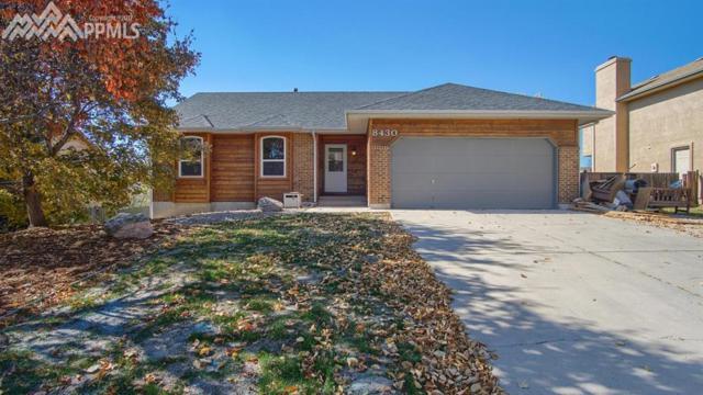 8430 Blue Sky Drive, Colorado Springs, CO 80920 (#7759818) :: Jason Daniels & Associates at RE/MAX Millennium