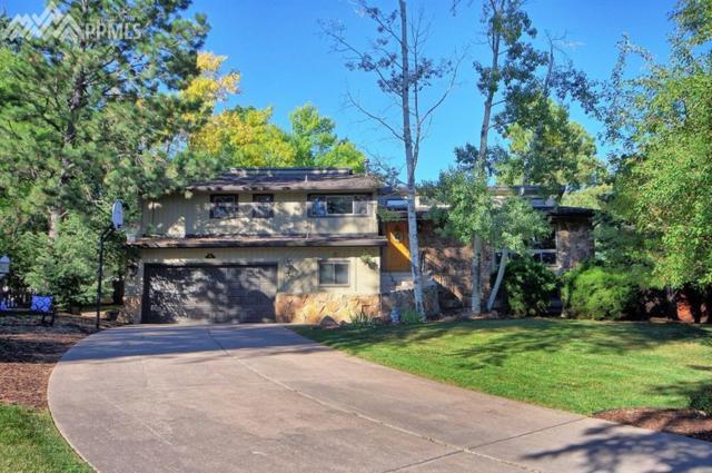40 Reno Scotty Terrace, Colorado Springs, CO 80906 (#7764268) :: 8z Real Estate