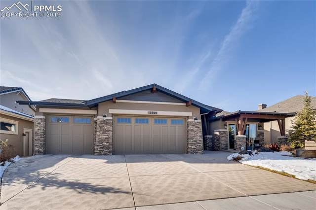 12590 Chianti Court, Colorado Springs, CO 80921 (#7774611) :: Tommy Daly Home Team