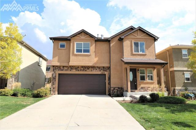 11619 Black Maple Lane, Colorado Springs, CO 80921 (#7777090) :: Action Team Realty