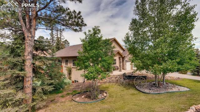 1420 Masters Drive, Woodland Park, CO 80863 (#7777507) :: 8z Real Estate