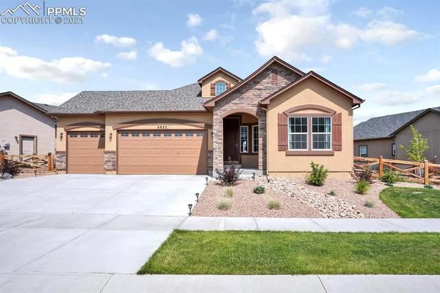 6825 Sedgerock Lane, Colorado Springs, CO 80927 (#7778524) :: Tommy Daly Home Team