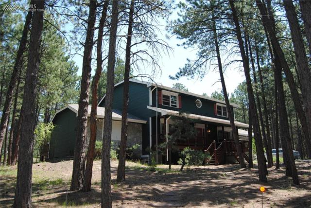 17855 Martingale Road, Monument, CO 80132 (#7779014) :: 8z Real Estate