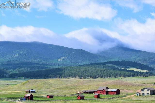5913 County Road 59, Lake George, CO 80827 (#7779069) :: Action Team Realty