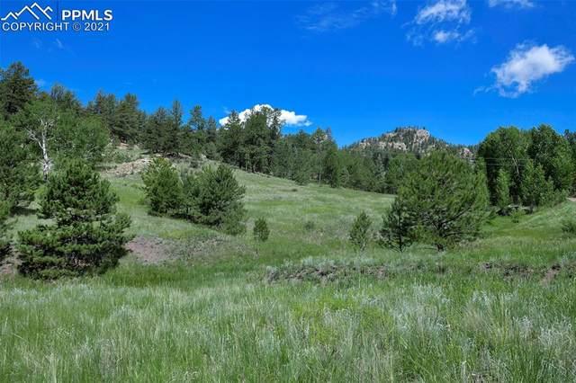717 Canyon Drive, Florissant, CO 80816 (#7779512) :: Compass Colorado Realty