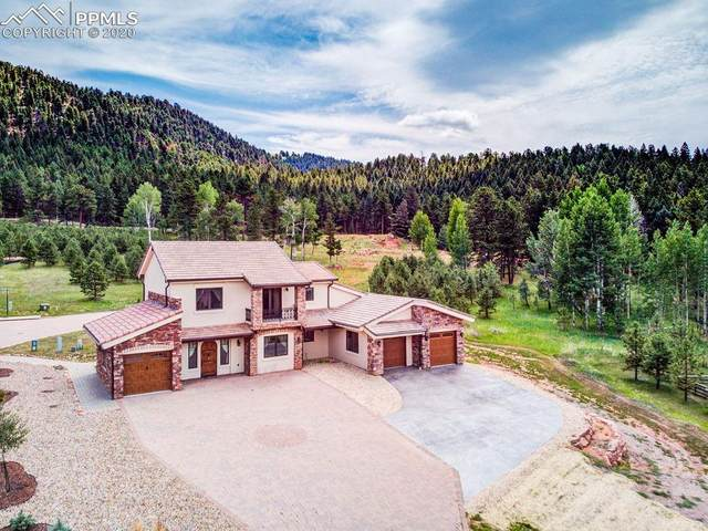 841 Majestic Parkway, Woodland Park, CO 80863 (#7783300) :: The Daniels Team