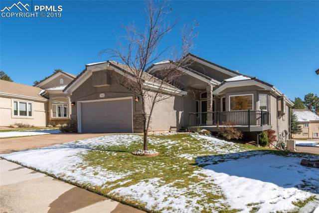 7853 Fawn Meadow View, Colorado Springs, CO 80919 (#7785259) :: The Daniels Team