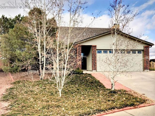 3870 Ayers Drive, Colorado Springs, CO 80920 (#7794305) :: The Daniels Team