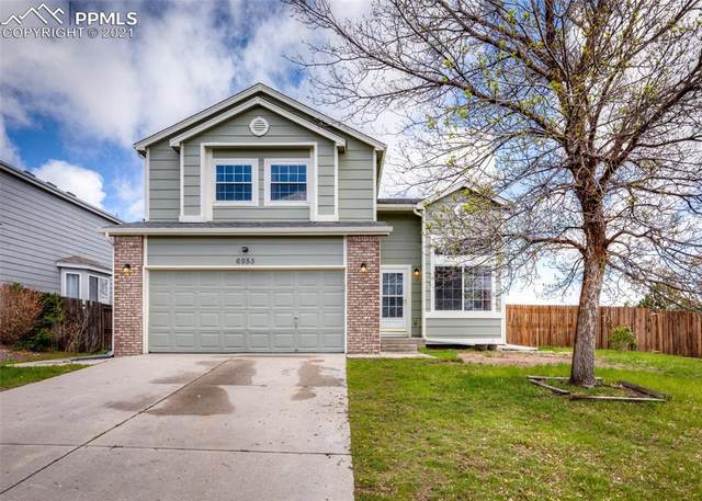 6955 Stockwell Drive, Colorado Springs, CO 80922 (#7796148) :: Fisk Team, RE/MAX Properties, Inc.