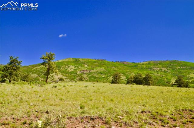 Elk Run Road, Canon City, CO 81212 (#7800512) :: 8z Real Estate