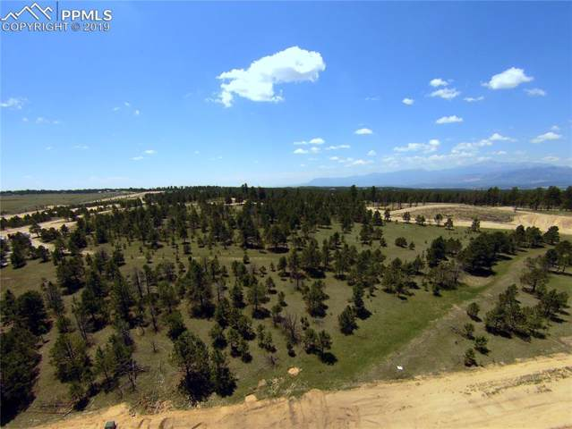 15331 Allen Ranch Road, Colorado Springs, CO 80908 (#7801331) :: CC Signature Group