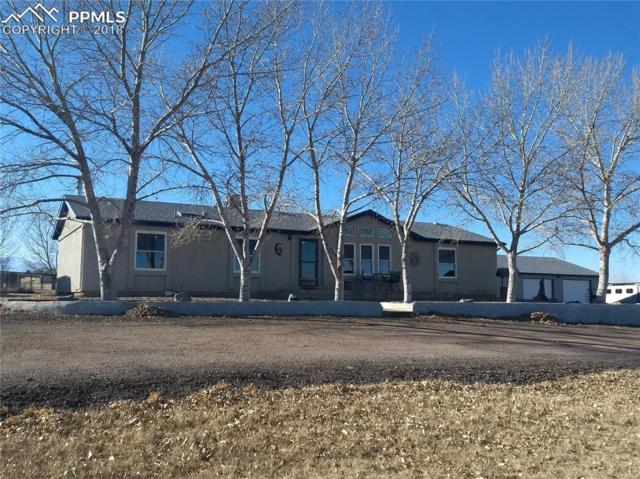 3610 E Blaney Road, Falcon, CO 80831 (#7803741) :: The Daniels Team