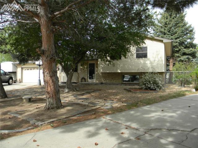 7005 Burroback Court, Colorado Springs, CO 80911 (#7805776) :: The Treasure Davis Team