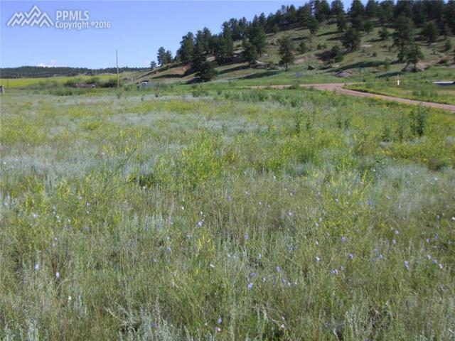 87 S Deer Mountain Road, Florissant, CO 80816 (#7810054) :: 8z Real Estate