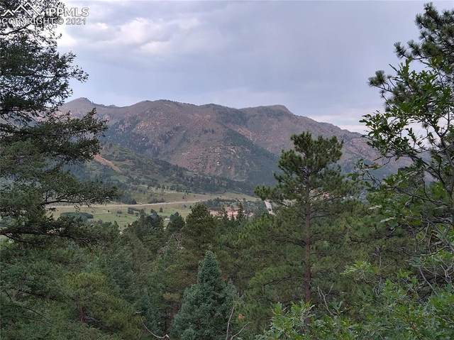 9850 Mountain Road, Cascade, CO 80809 (#7814644) :: Action Team Realty