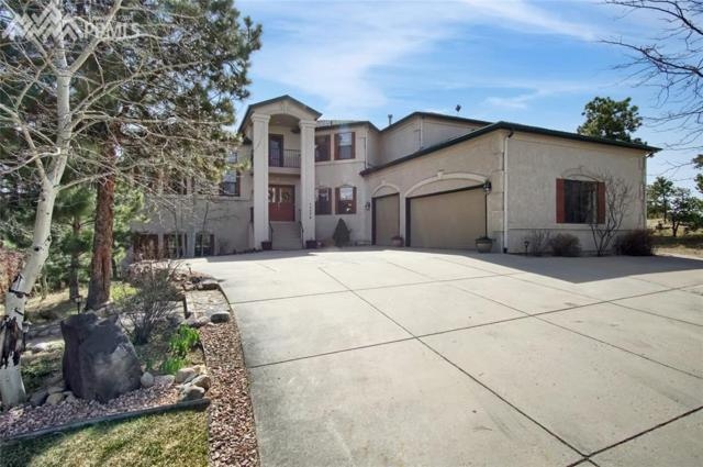 17775 Minglewood Trail, Monument, CO 80132 (#7816315) :: The Dunfee Group - Keller Williams Partners Realty