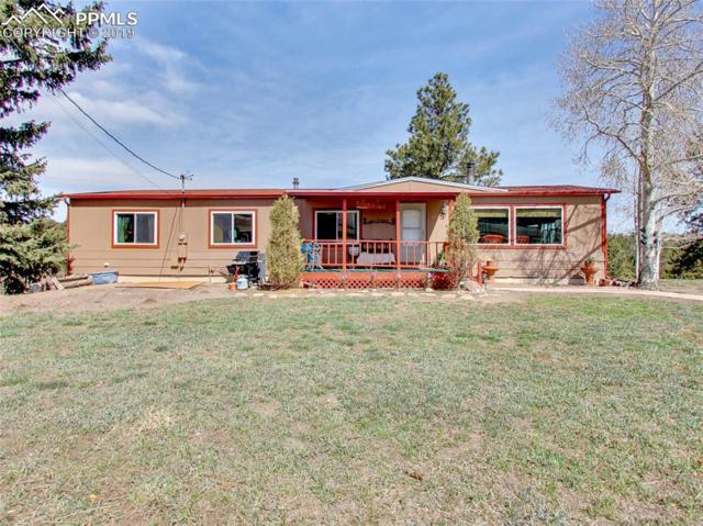 141 Georges Lane, Woodland Park, CO 80863 (#7816694) :: Perfect Properties powered by HomeTrackR