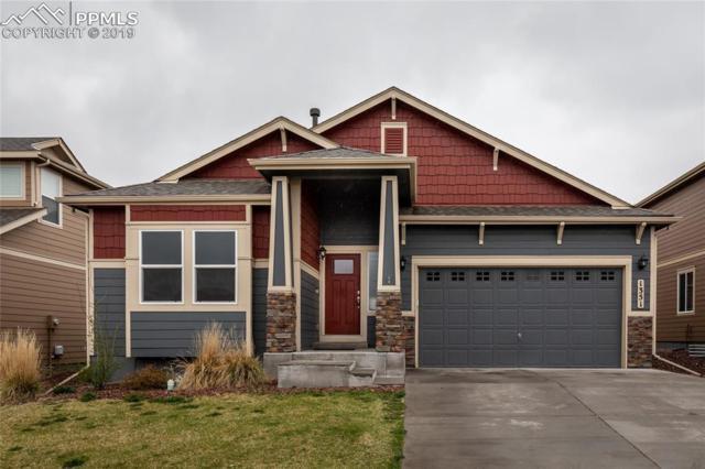 1351 Alveston Loop, Colorado Springs, CO 80910 (#7824879) :: Venterra Real Estate LLC