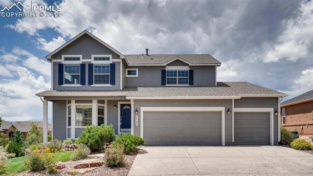 8726 Country Creek Trail, Colorado Springs, CO 80924 (#7828714) :: CC Signature Group
