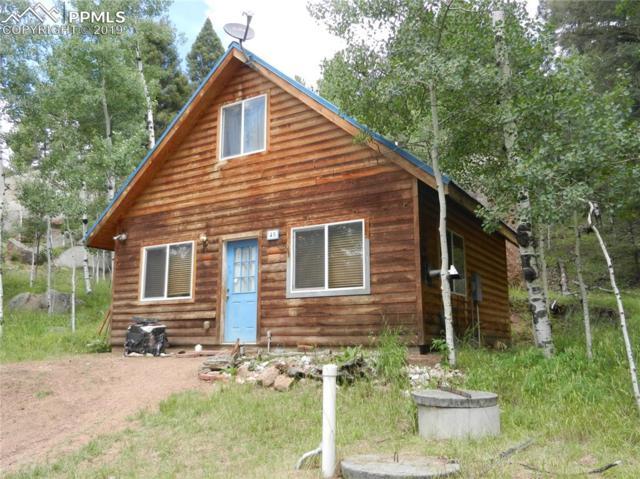 45 Spruce Circle, Florissant, CO 80816 (#7831512) :: The Treasure Davis Team