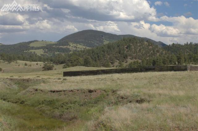128 C Badger Lane, Guffey, CO 80820 (#7831948) :: 8z Real Estate