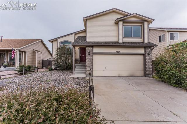7229 Moss Bluff Court, Fountain, CO 80817 (#7832075) :: The Dunfee Group - powered by eXp Realty