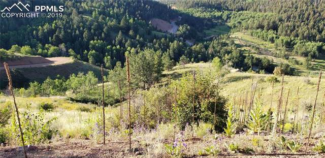 225 Last Dollar Drive, Cripple Creek, CO 80813 (#7836400) :: The Treasure Davis Team