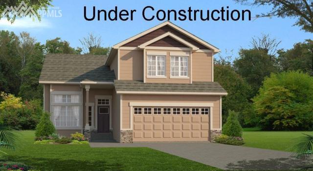 7456 Alpine Daisy Drive, Colorado Springs, CO 80925 (#7837664) :: 8z Real Estate