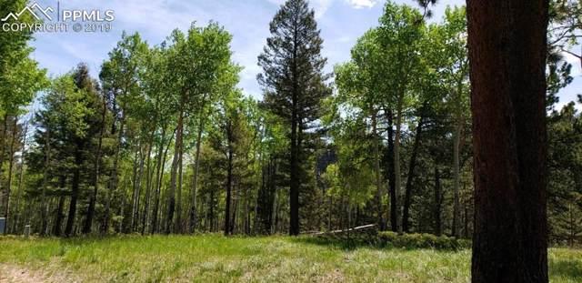 2700 N Elk Ridge Road, Divide, CO 80814 (#7837677) :: The Kibler Group