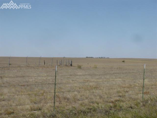 0000 Edison Road, Yoder, CO 80864 (#7839511) :: The Treasure Davis Team