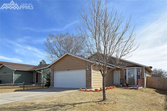 4710 Witches Hollow Lane, Colorado Springs, CO 80911 (#7846598) :: Action Team Realty