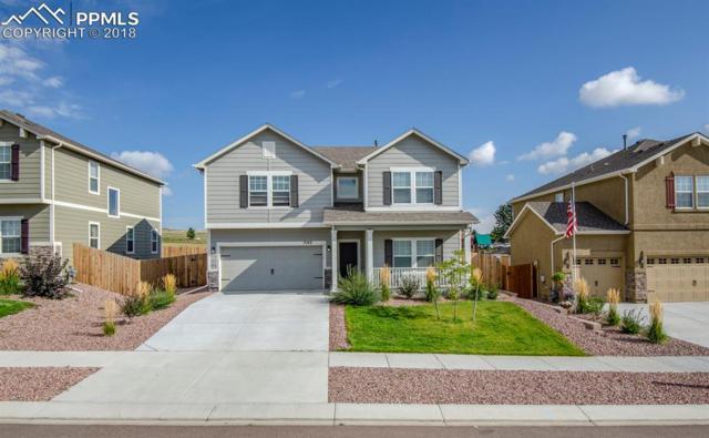 7142 Thorn Brush Way, Colorado Springs, CO 80923 (#7848788) :: 8z Real Estate