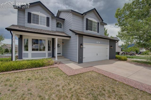 406 Talus Drive, Monument, CO 80132 (#7851458) :: Action Team Realty