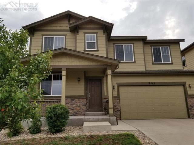9745 Fleece Flower Way, Peyton, CO 80831 (#7854582) :: The Dunfee Group - Keller Williams Partners Realty