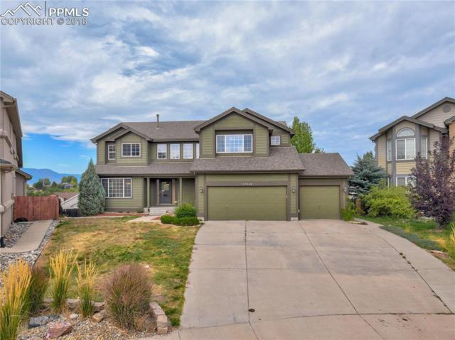 13860 Horsetail Terrace, Colorado Springs, CO 80921 (#7856151) :: Action Team Realty